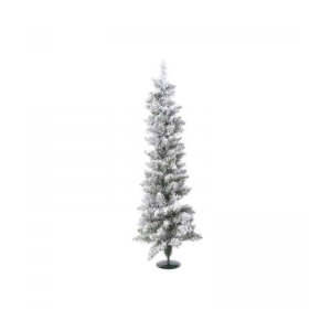Snowy Pencil Pine Mini Tree