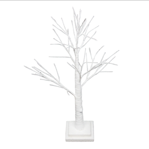 White Spiky Twig Tree