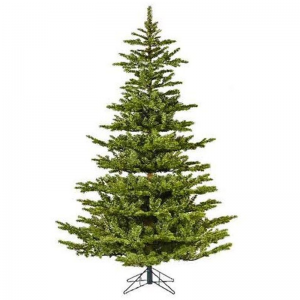 Koreana Spruce 210cm OUR PRICE £209.99