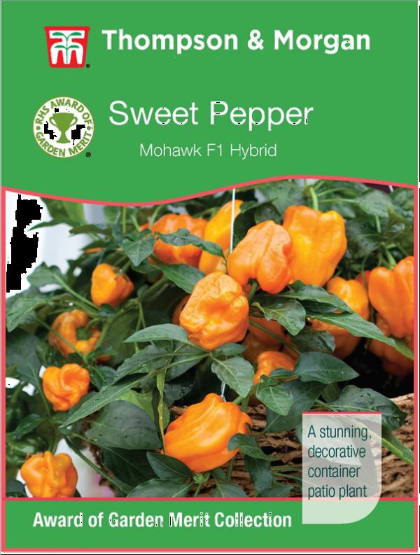 Pepper Sweet Mohawk