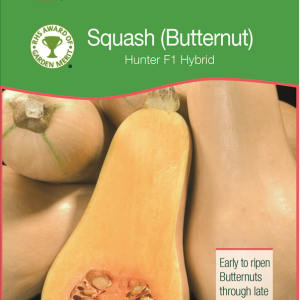 Butternut Squash Hunter