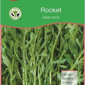 Rocket Astra