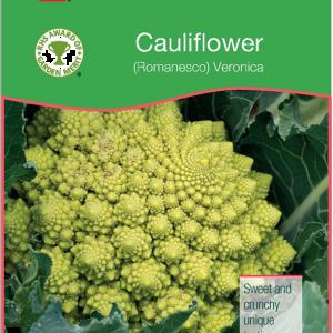 Cauliflower (Romanesco)