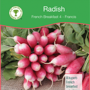 Radish French Breakfast 4