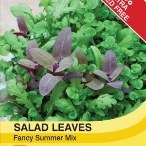 Salad Leaves - Fancy