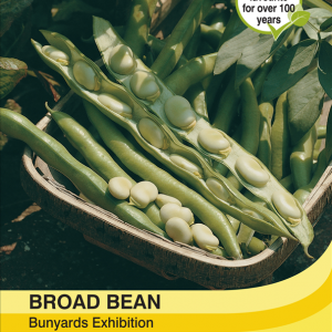 Broad Bean Bunyards