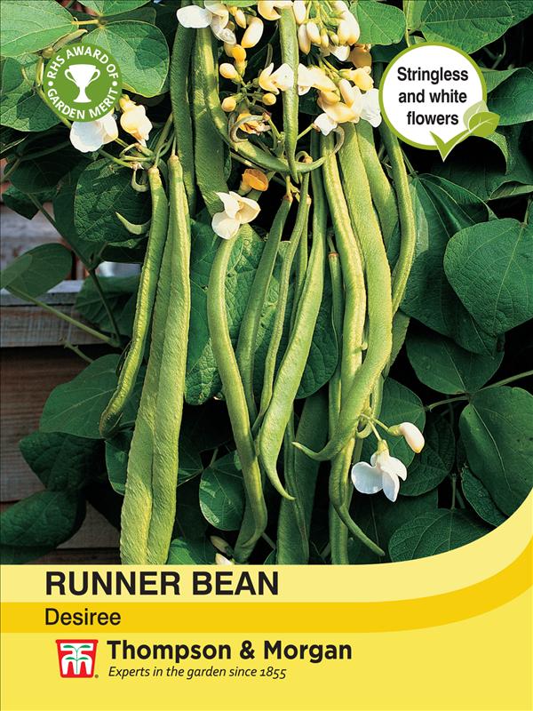 Runner Bean Desiree