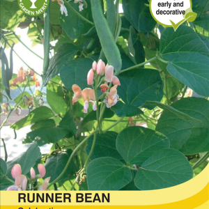Runner Bean Celebration