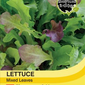 Lettuce Leaves Mixed