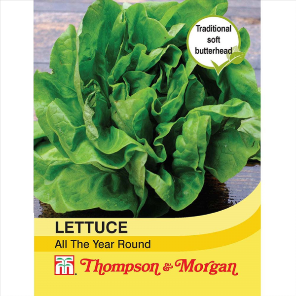 Lettuce All Year Round