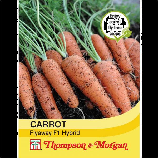 Carrot Fly Away F1