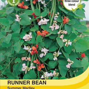 Runner Bean Summer Medley