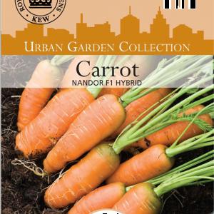 Carrot Nandor