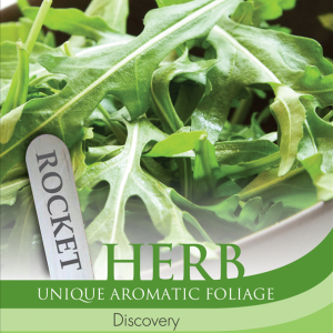 Herb Rocket Discovery