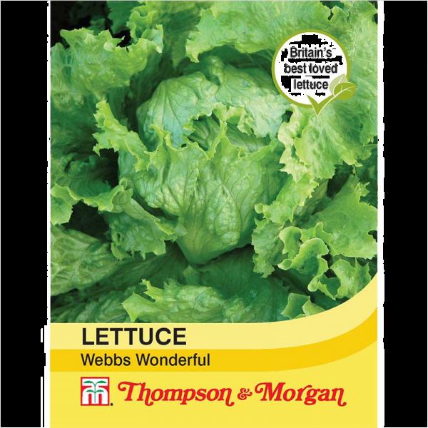Lettuce Webbs Wonderful