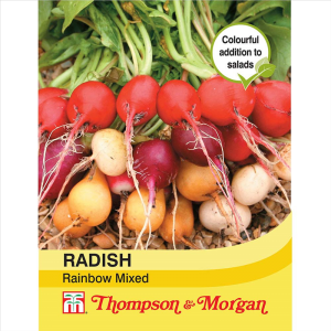 Radish Rainbow Mixed