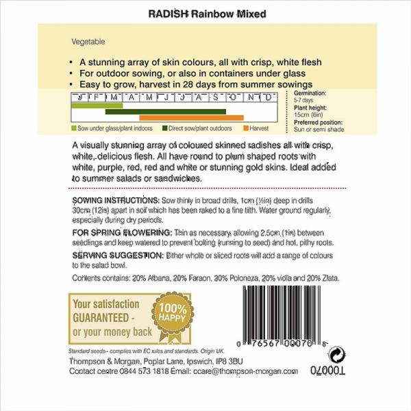 Radish Rainbow Mixed