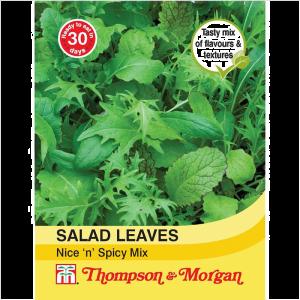 Salad Leaves - Nice n Spicy