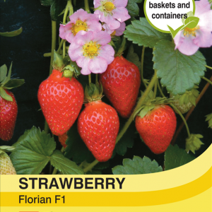 Strawberry Florian F1