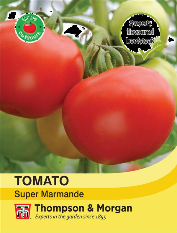 Tomato Super Marmande