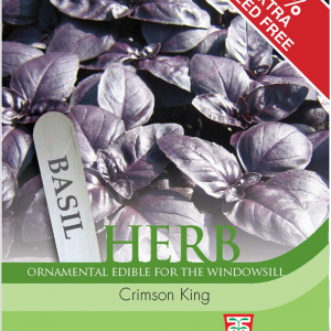 Herb Basil Crimson King