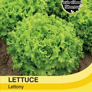 Lettuce Lettony