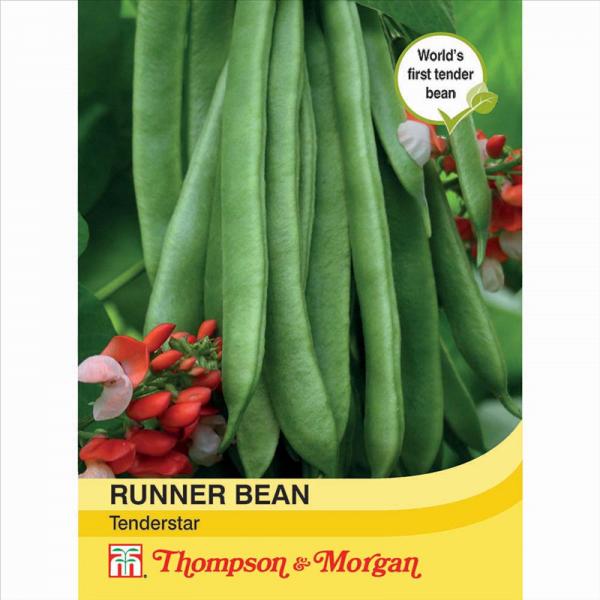 Runner Bean Tenderstar