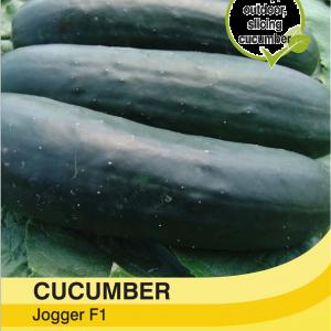 Cucumber Jogger F1