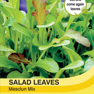 Salad Leaves - Mesclun
