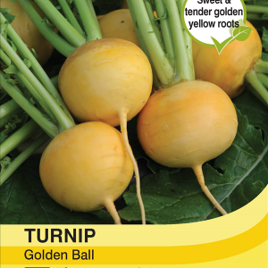Turnip Golden Ball