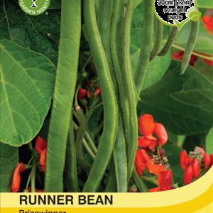 Runner Bean Prizewinner
