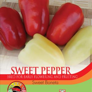 Pepper Sweet Boneta