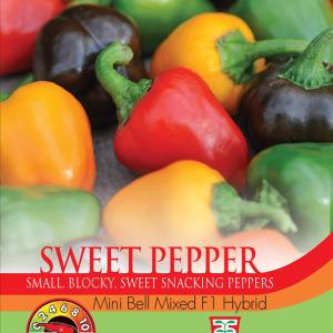 Pepper Sweet Mini Bell F1