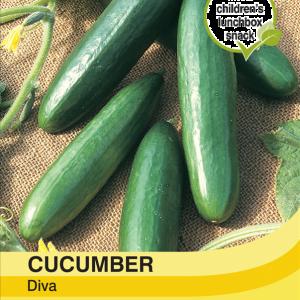 Cucumber Diva