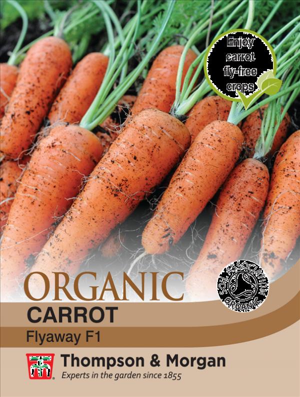 Carrot Flyaway (Organic)