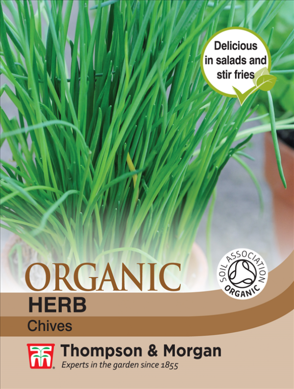Herb Chives (Organic)