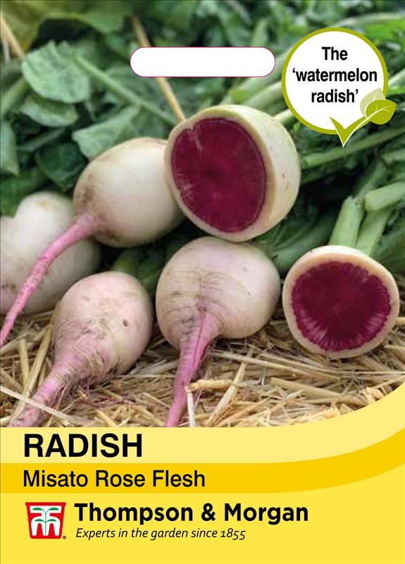 Radish Misato Rose Flesh