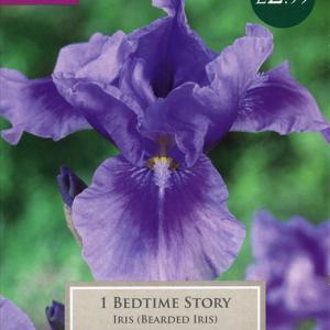 Iris Bedtime Story 1