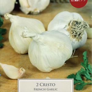 French Garlic Cristo