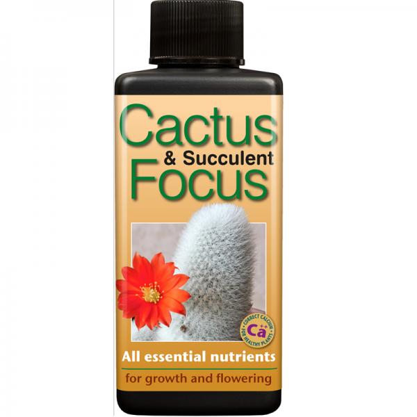 Cactus Focus  100ml