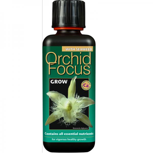 Orchid Focus Grow 100ml