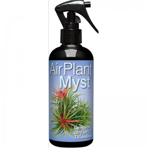 AirPlant Myst