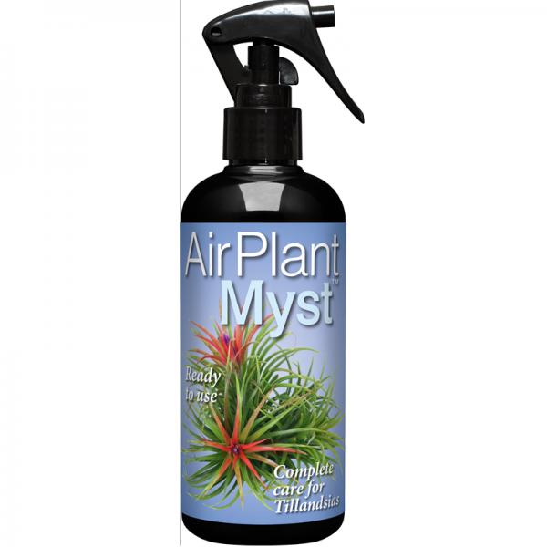 AirPlant Myst
