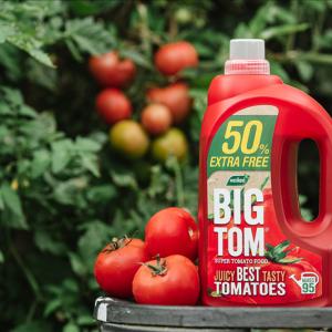 Westland BIG TOM Super Tomato Food 1.25L + 50%