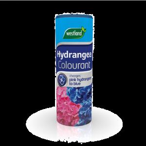Hydrangea Colourant
