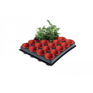 Professional Mini Seed and Cutting Tray 20 x 6cm Pots