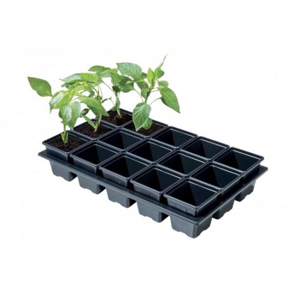 Professional Mini Vegetable Tray 15 x 7cm Sq Pots