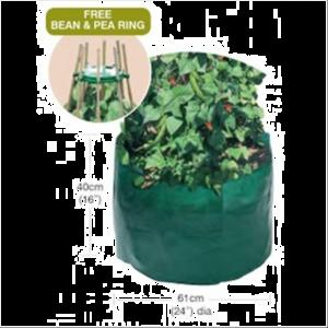 Bean & Pea Bag with FREE Bean & Pea Ring