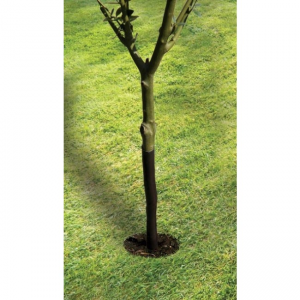 "61cm (24"") Spiral Tree Guard"