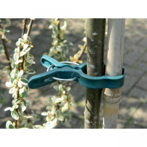 Large Spring Plant Clips (5)